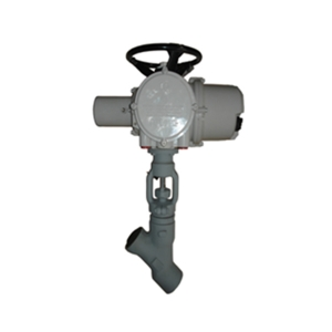 3/8'' 4500LB A105 Rotork electrical actuator with hand wheel SW Y type globe valve