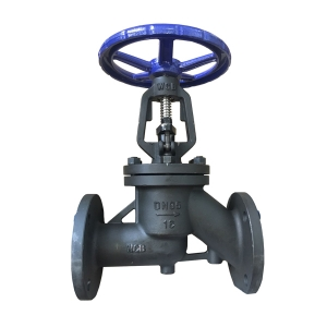 DN65 PN 16 WCB RF manual Antibiotic stop valve