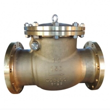 China 10'' C95800 150LB RF swing check valve factory