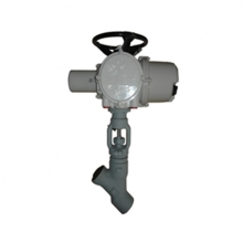 La fábrica de China 3/8'' 4500LB A105 Rotork electrical actuator with hand wheel SW Y type globe valve