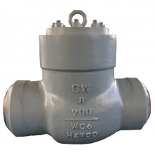 China WC6 High temperature high pressure seal BW check valve factory